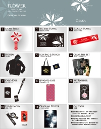 Osaka concert goods. Photo: C-JeS Entertainment.